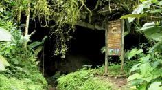 Parque Nacional Natural Cueva de los Guácharos