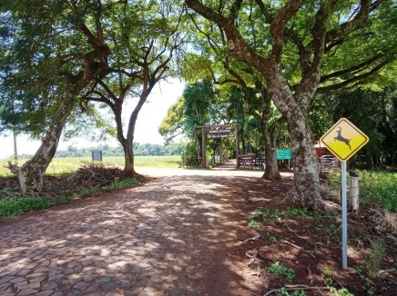 Parque Estadual de Vila Rica do Espírito Santo