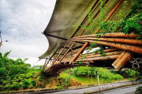 Puente de Guadua