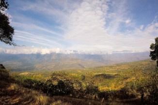 Camino Real/ foto David Sebastian Lopez Restrepo