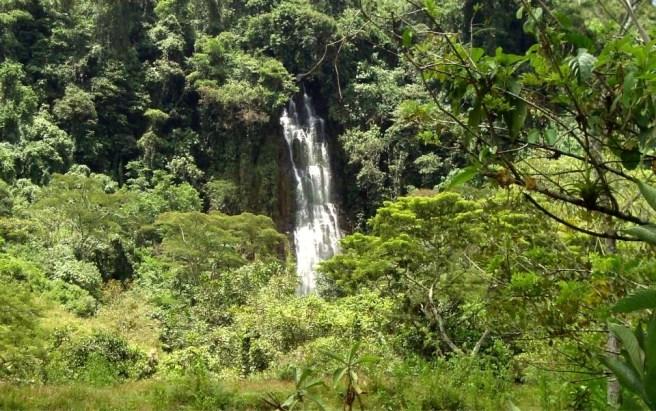Cascada Caraota