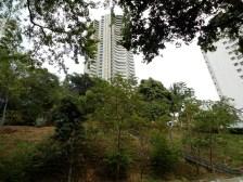 Parque La Loma/ foto Ricardo Villabona