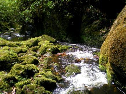 Parque Natural San Rafael