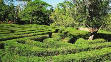Laberinto Vegetal del Parque Provincial Juan Vortisch