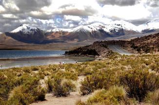 Lago Chungará/ foto Jorge Leon Cabello