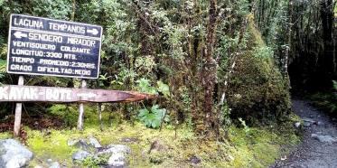 Parque Nacional Queulat/ foto Cynthia Baeza Pulgar