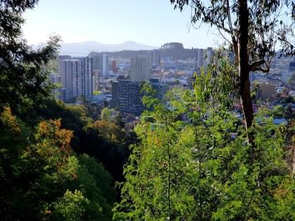 Cerro Caracol/ foto Carlos Alvarez