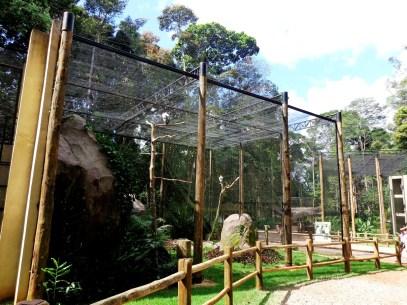 Parque Zoobotânico de Carajás/ foto Antônio Marcos