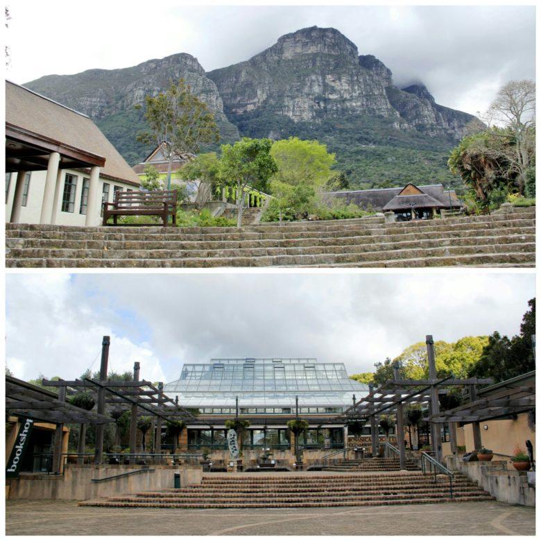 estufa do Jardim botânico de Cape Town