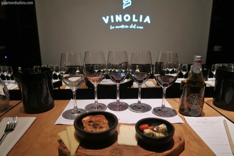 Vionolia vinícola em Santiago