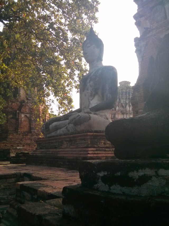 Ver Budas en Ayutthaya