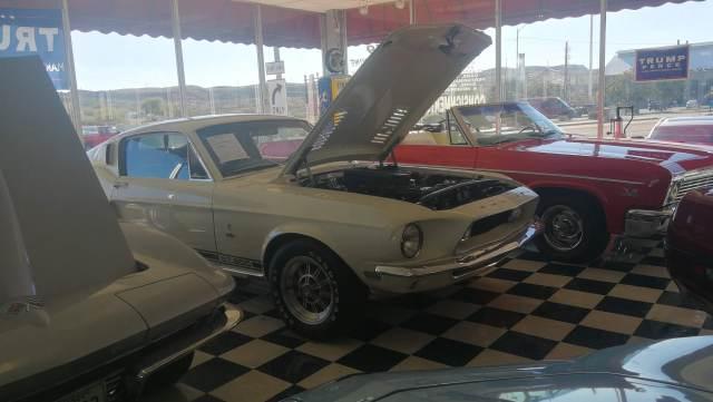 Tesoros de la carretera.Shelby GT 500 kingman az