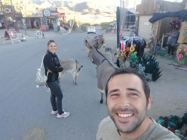 Oatman AZ ha convertido a los burros en sus habitantes mas honoríficos.