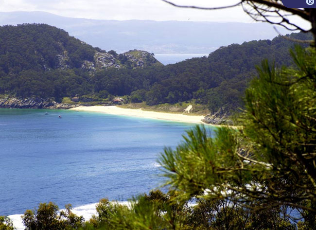 Isla de San Martiño (Cíes)