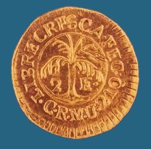 Moneda La Palmera