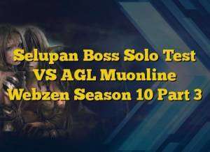 Selupan Boss Solo Test VS AGL Muonline Webzen Season 10 Part 3