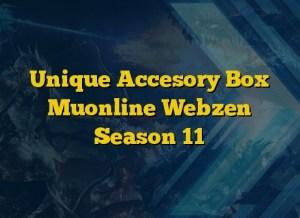 Unique Accesory Box Muonline Webzen Season 11