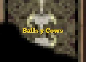 Balls y Cows