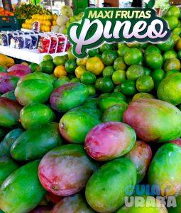Mangos - Maxifrutas