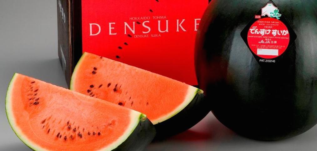 Anguria nera Densuke