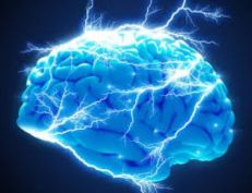 Brain capabilities increase
