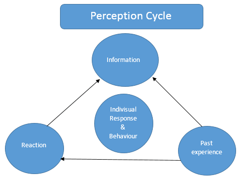 Perception Cycle in communication