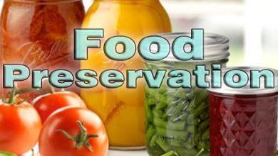 food preservation methods
