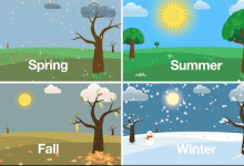 4 seasons of the year