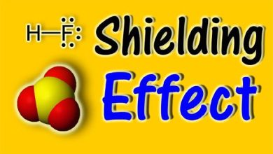 Shielding and Screening Effect