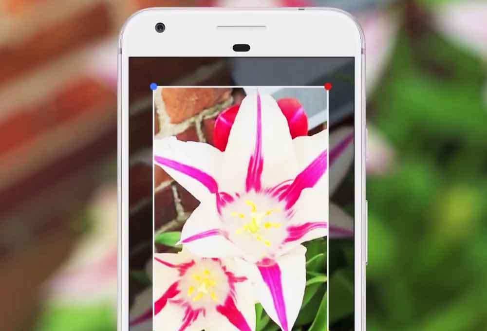 application Google Lens