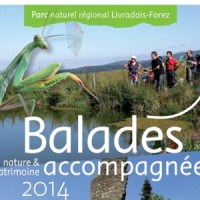 Balades dans le Livradois Forez
