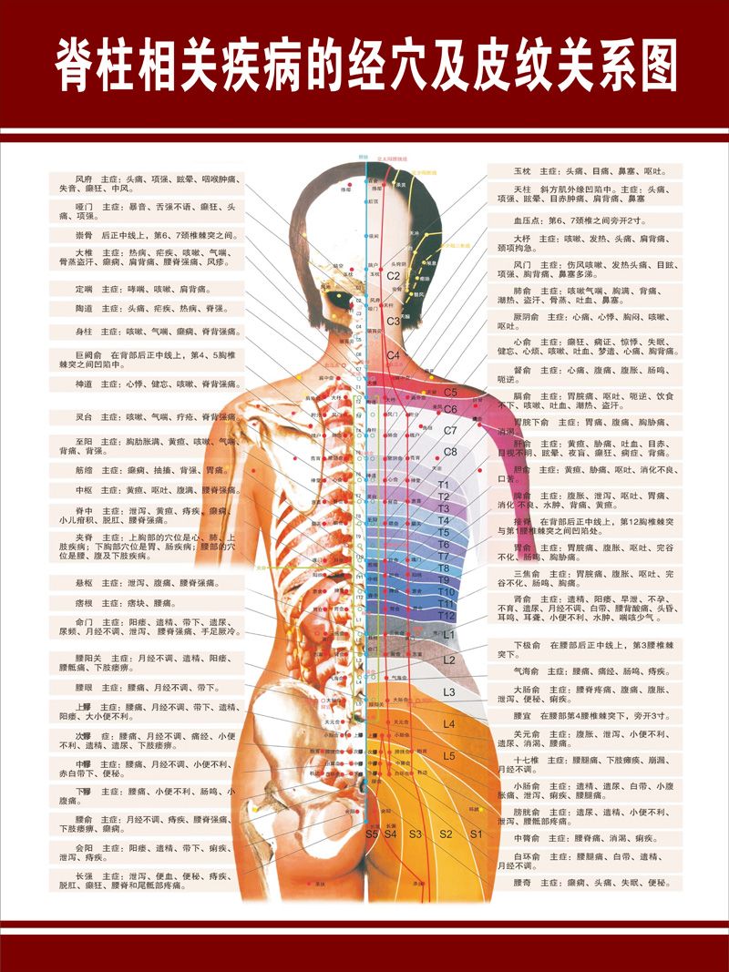 medium resolution of get quotations acupoints along the spine related diseases and dermatolyphic hanging poster panels hospital chart diagram schematic diagram