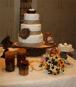 Cakes Come True Ocala FL Rustic Wedding Guide