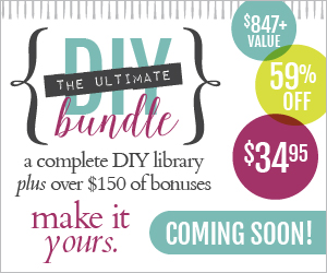 Ultimate DIY Bundle Ecourse