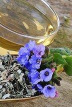 lungwort tea benefits