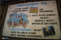 Photo Tips - Kilimanjaro Safaris - Animal Kingdom Attraction