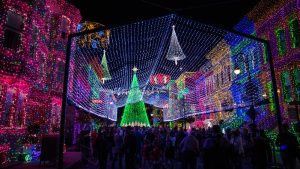 Osbourne Family Spectacle of Dancing Lights - Hollywood Studios