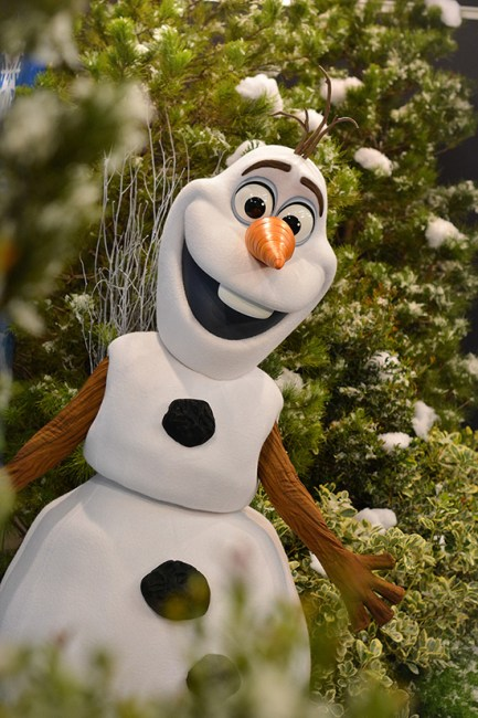 Olaf Meet and Greet - Hollywood Studios