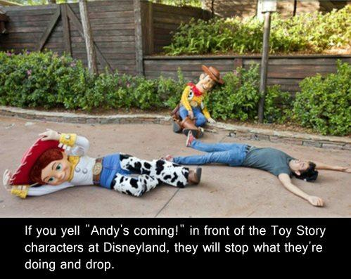 Andy's Coming - Disney World Myth
