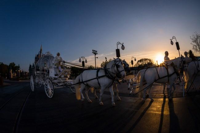 Cinderella Carriage - Disney World Wedding
