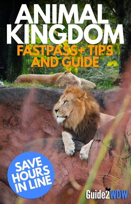 Animal Kingdom - FastPass+ Tips and Guide