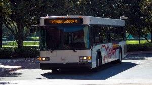 Do buses go from park to park? - Walt Disney World