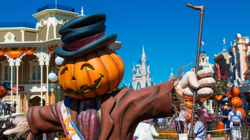 Fall at Disney World - 2016