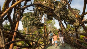 Pandora - Walt Disney World
