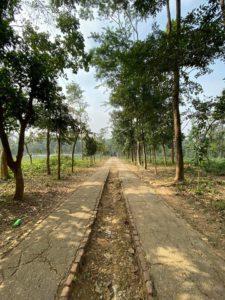 মধুটিলা ইকোপার্ক, শেরপুর