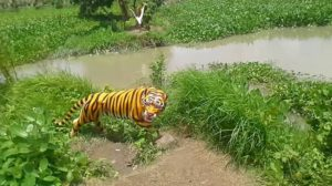 হরিণপালা রিভার ভিউ ইকোপার্ক, পিরোজপুর