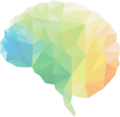 Clip art of a brain to demonstrate the logical learning process of our method of guided meditation