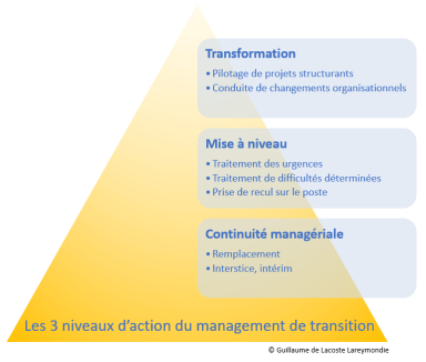 Les 3 niveaux d'intervention du management de transition