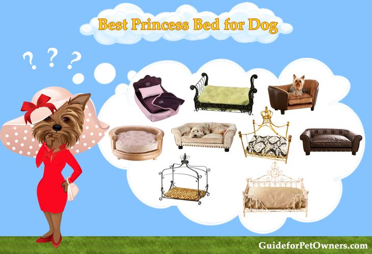 Best Princess Bed for Dog