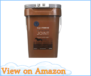 Equithrive Joint Powder review